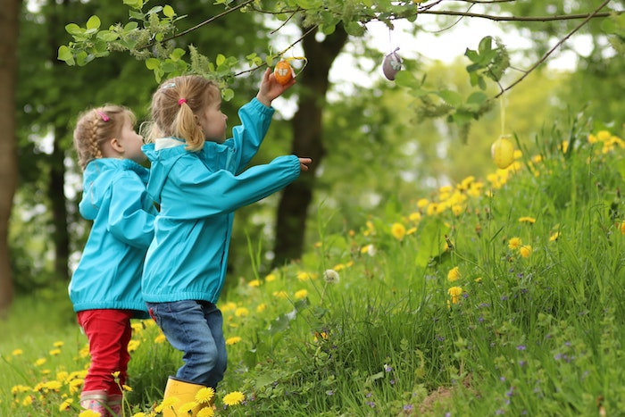Two children exploring a forest with their childminder